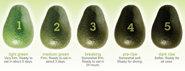 Five stages of ripening